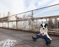 がっかり牛