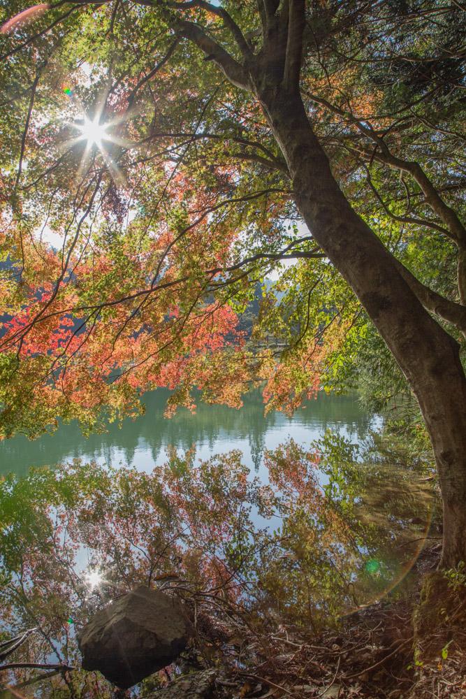 南伊奈ヶ湖