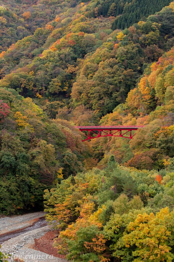 高井橋と紅葉